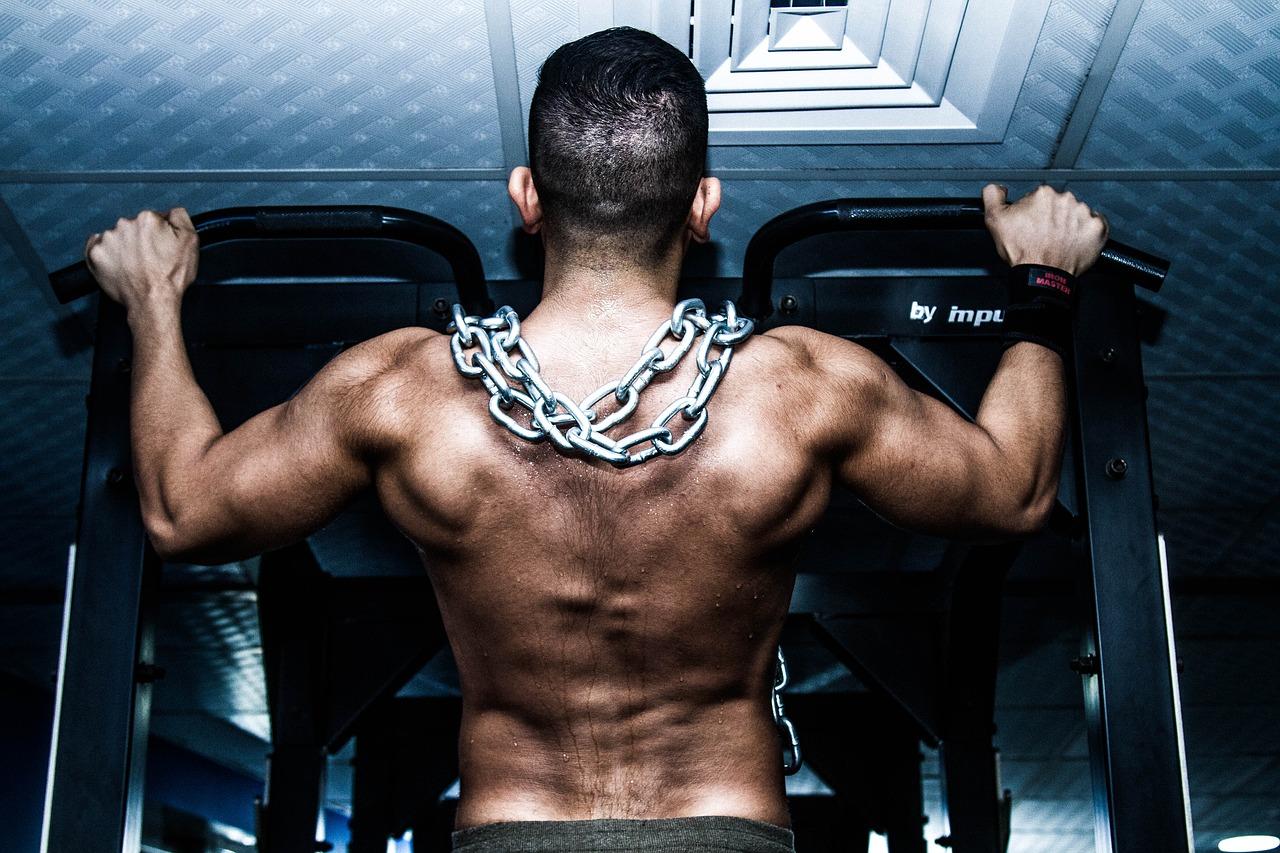Muskelaufbau mit Proteinen und Boostern
